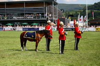 PARADE OF PRIZE WINNING HORSES