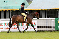 S.186 CHILDS RIDING PONIES CHAMPIONSHIP