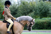 C121A M&M JUNIOR RIDDEN SMALL BREED